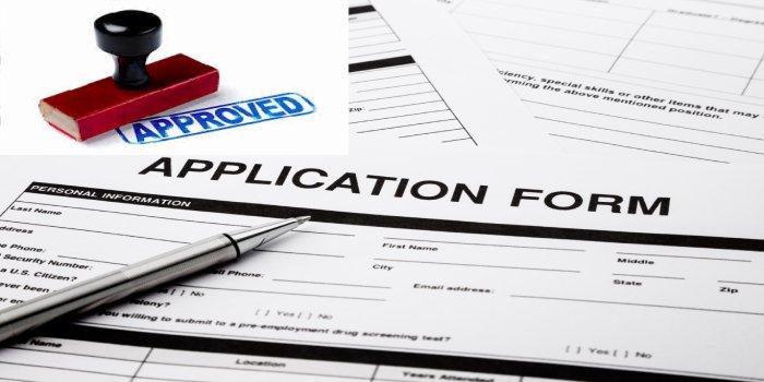 ca final application form